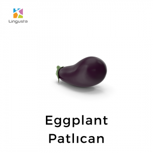 ingilizce eggplant patlıcan