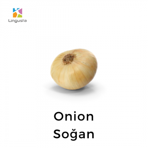 ingilizce onion soğan