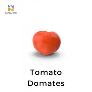 ingilizce domates tomato