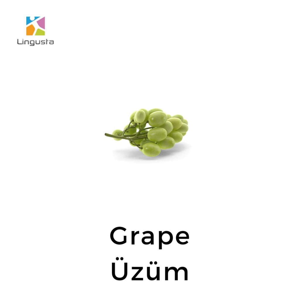 ingilizce üzüm grape