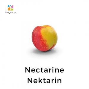 ingilizce nektarin nectarine