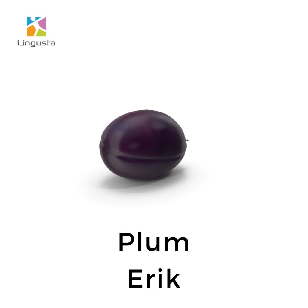 ingilizce erik plum