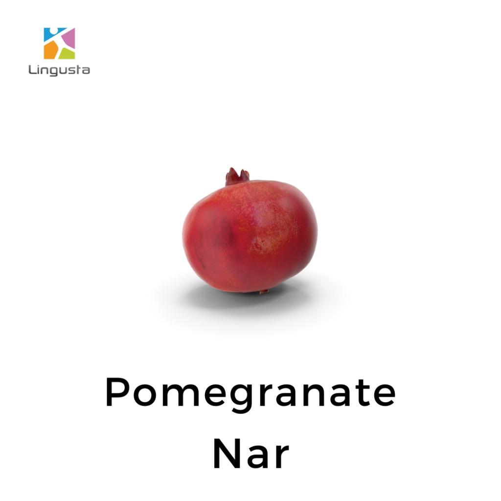 ingilizce nar pomegranate