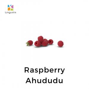 ingilizce ahududu raspberry